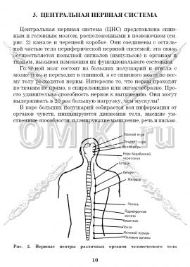 Кордицепс Тяньши страница 10