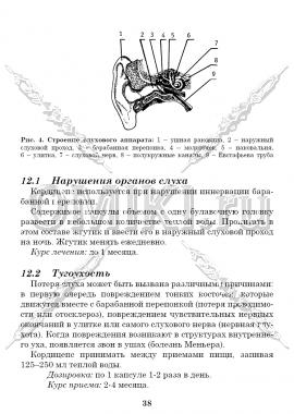 Стр 38